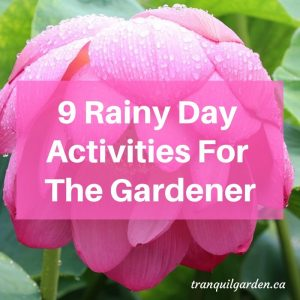 9 Rainy Day Activities For The Gardener
