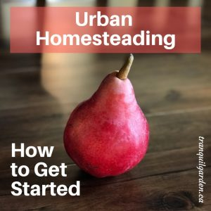How to Get Started with Urban Homesteading
