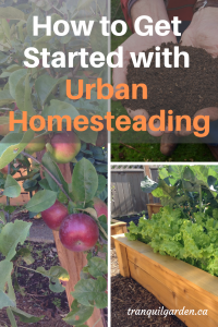 How to Get Started with Urban Homesteading - Are you a beginner and wondering how to have an urban homestead? Looking for sustainable living ideas? Get ideas and inspiration to start small in key areas of homesteading.