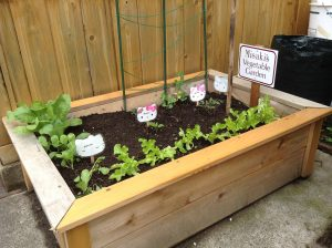 Children's Garden Planter Box with vegetables growing in it