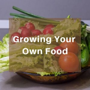 Growing Your Own Food - Learn how to grow your own food in your own garden or even indoors. Grow food not lawns. Maximize growing food in small spaces in a few square feet or in pots. Encourage your kids to learn how to grow their own food. Learn how to preserve your harvest, stock up your pantry for emergency preparedness and save seeds.