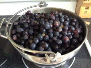 Grapes ready to be cooked