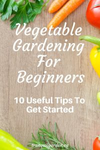 Vegetable Gardening For Beginners_ 10 Useful Tips You Need - Beginner gardeners are often overwhelmed by where to start with growing their own food. Learn some tips on how to overcome some of the challenges and make starting easier and more successful.