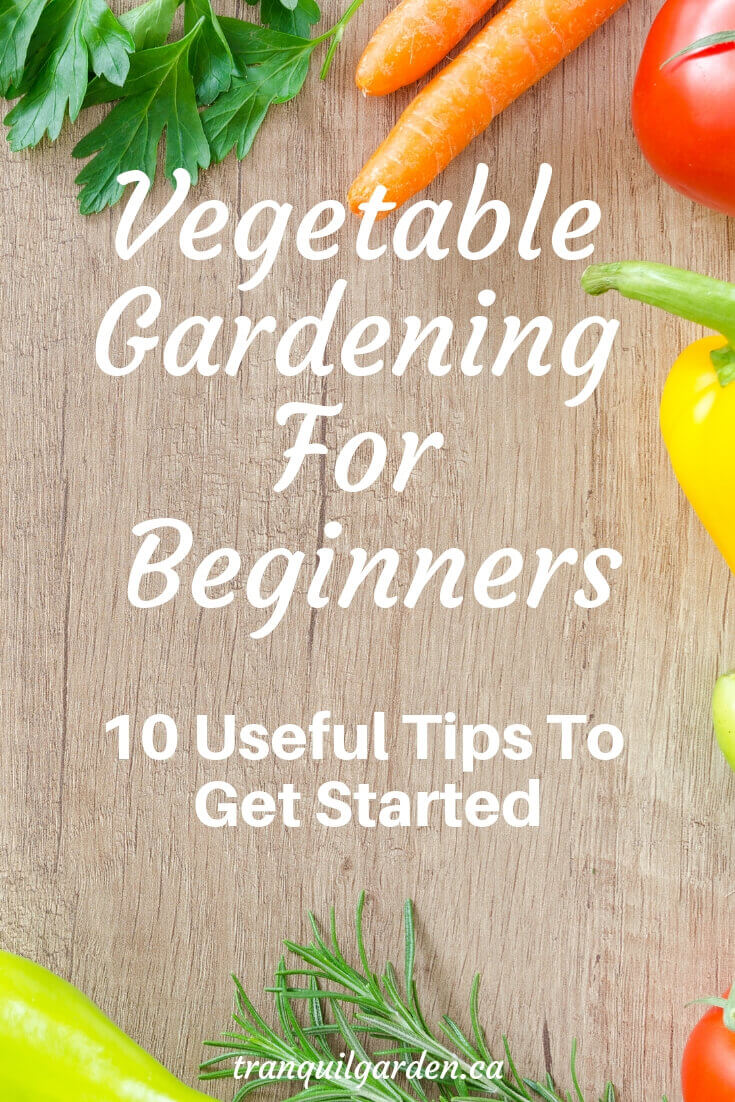 Are you itching to start growing your own vegetables at home? Before you start, keep these tips on vegetable gardening for beginners in mind. #vegetablegardening #beginners #homegrown