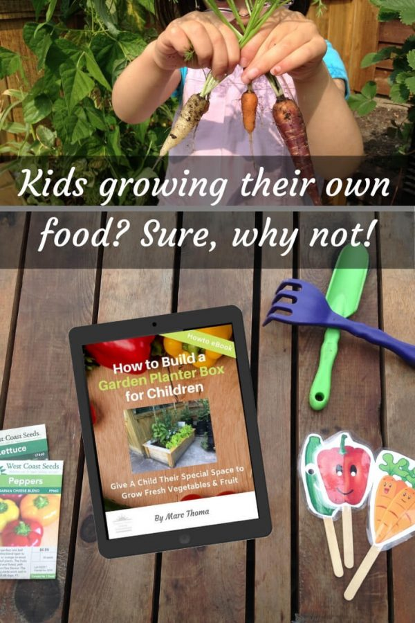 flatlay of iPad showing how to build a garden planter box for children with child's garden tools, seed packets and plant labels