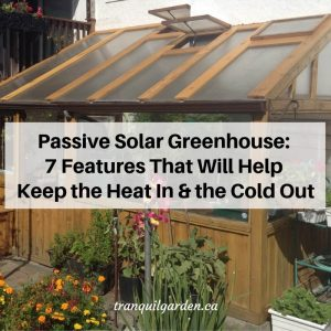 Passive Solar Greenhouse: 7 Features That Will Help Keep the Heat In and the Cold Out