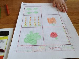 partially completed vegetable garden plan for kids on graph paper