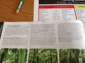 cucumber planting info in seed catalogue