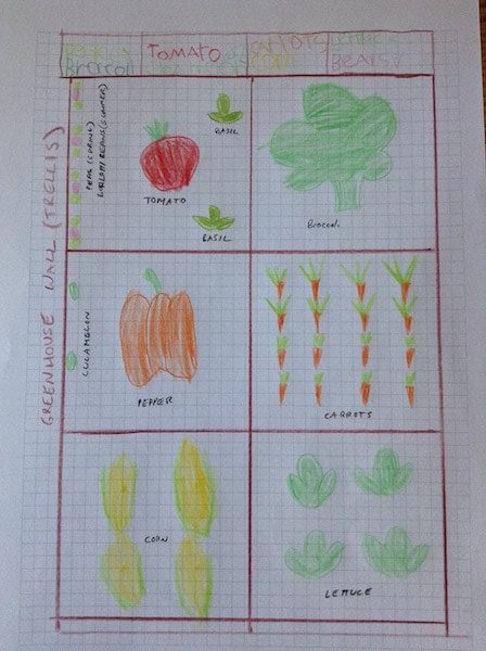 finished vegetable garden plan for kids on graph paper