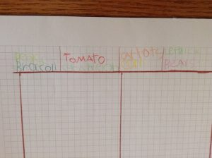 list of veggies on graph paper