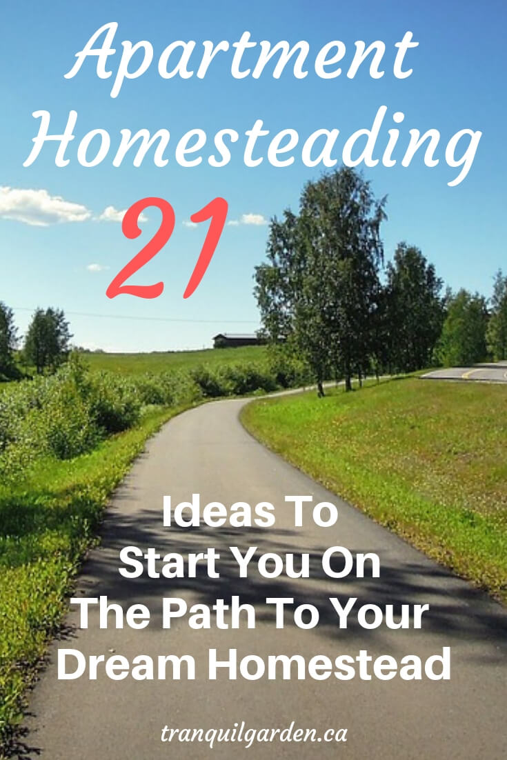 Are you stuck living in an apartment and yearn for the homesteading lifestyle? Stop dreaming and waiting: apply these apartment homesteading ideas now. #apartmenthomesteading #dreamhomestead