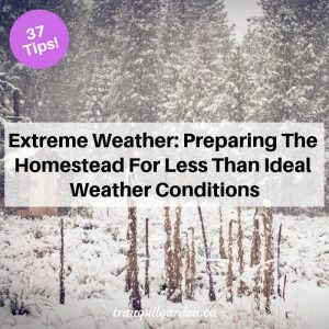 Extreme Weather: Preparing The Homestead For Less Than Ideal Weather Conditions [37 Tips!]
