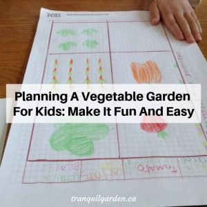 Planning A Vegetable Garden For Kids: Make It Fun And Easy