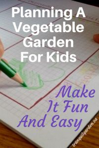 drawing vegetables on graph paper