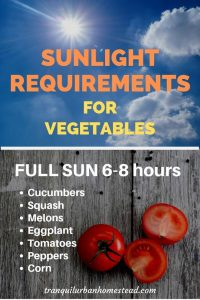 sunlight requirements full sun