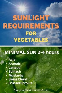 sunlight requirements minimal sun