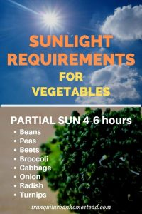 sunlight requirements partial sun