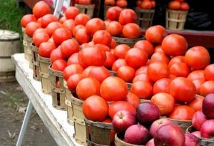 tomatoes and apples for sale on produce stand