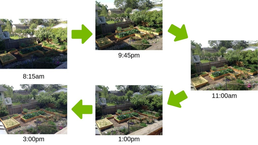sun exposure on raised beds throughout the day