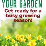 Spring Clean Your Garden