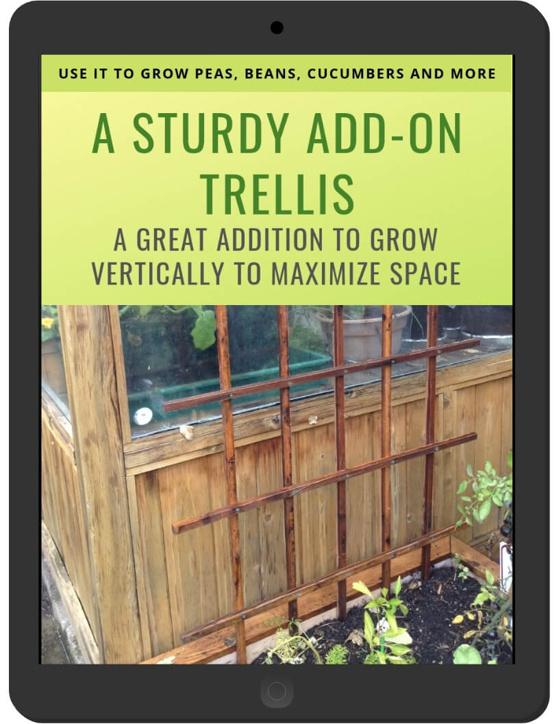 A Sturdy Add-on Trellis on iPad