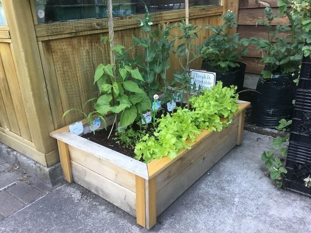 children's garden planter box