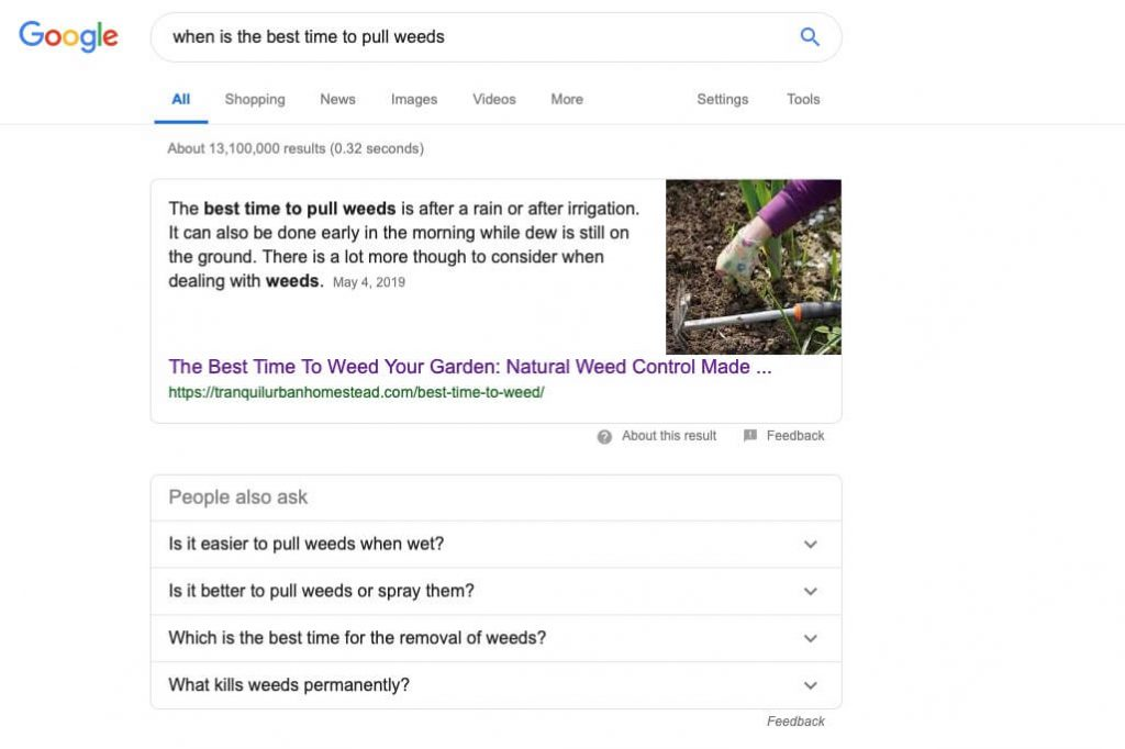 best time to weed google search result
