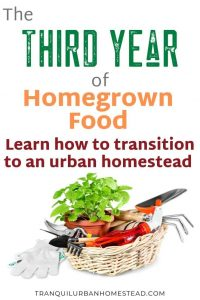 Homegrown Food As A Lifestyle – The Third Year