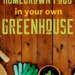 greenhouse guide