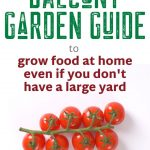 Balcony Garden Guide