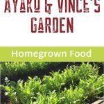 Ayako garden