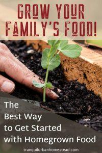 Family Raised Bed Garden eBook