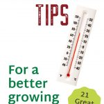 21 Greenhouse Tips