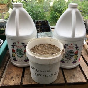 Liquid Vs Granular Fertilizer For Growing Vegetables: Can You Use Both?